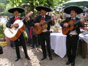 viva mexico fiesta mexikanische veranstaltungen von profi s organisiert. Black Bedroom Furniture Sets. Home Design Ideas